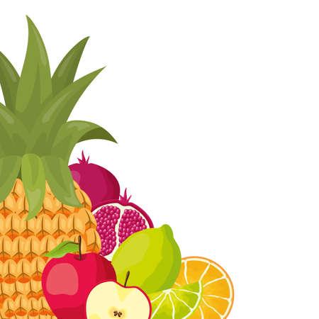 tropical fruits pineapple apple lemon pomegranate orange vector illustration