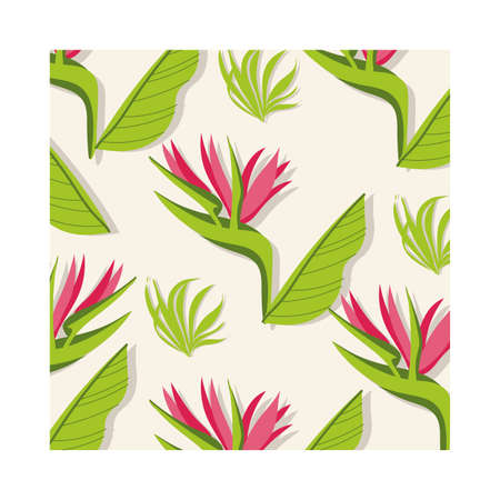 heliconias plants tropical pattern background vector illustration design