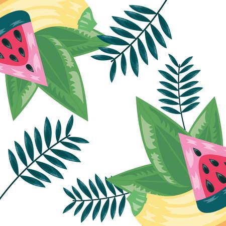 watermelon banana tropical fruits exotic leaves vector illustration
