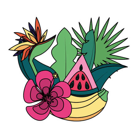 banana watermelon flower tropical fruits foliage exotic vector illustration