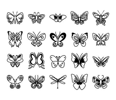 bundle of butterflies set icons vector illustration design