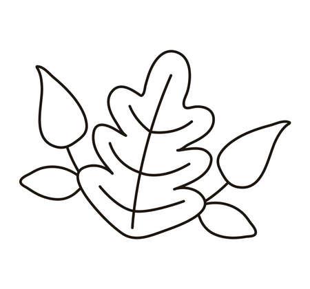 leaf autumn line style icon vector illustration design Illusztráció
