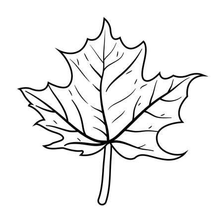 autumn maple leaf nature icon vector illustration design Illusztráció