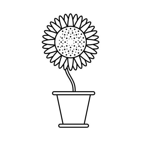 sunflower growth plant in ceramic pot line style icon vector illustration design