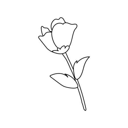 rose flower garden nature icon vector illustration design Stock fotó - 157605841