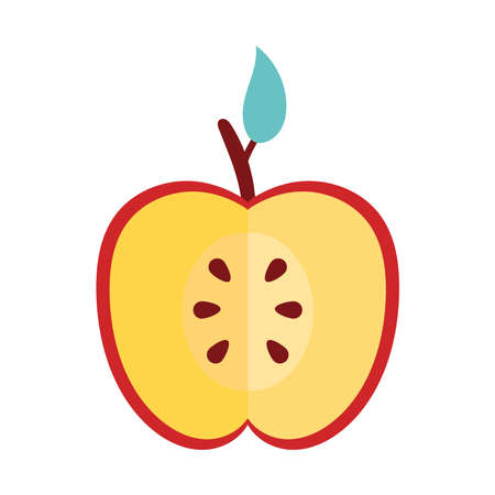 apple red half fresh fruit nature icon vector illustration design