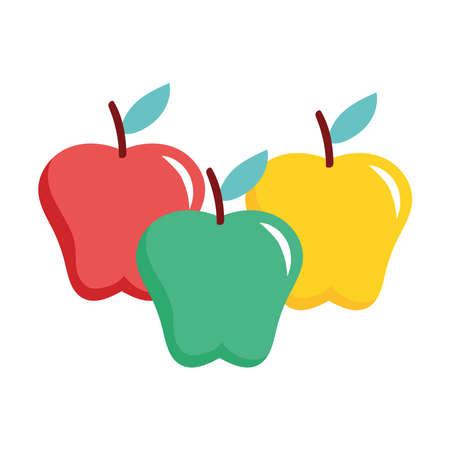 apples fresh fruits nature icons vector illustration design