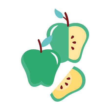 apples green fresh fruits nature icons vector illustration design Ilustracja