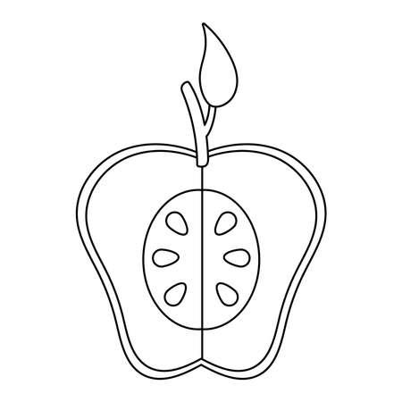 half apple fresh fruit nature line style icon vector illustration design
