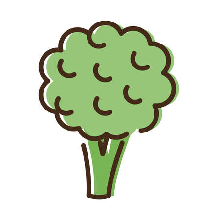 broccoli fresh vegetable line and fill style icon vector illustration design