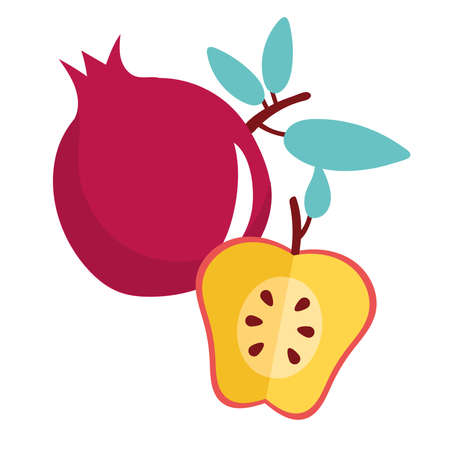 apple red and pomegranate fresh fruits vector illustration design Ilustrace