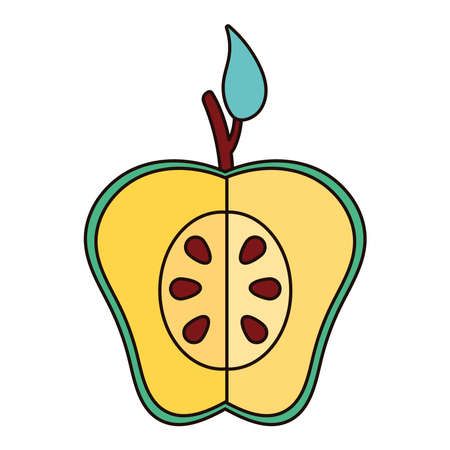 half apple green fresh fruit nature icon vector illustration design