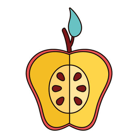 apple red half fresh fruit nature icon vector illustration design