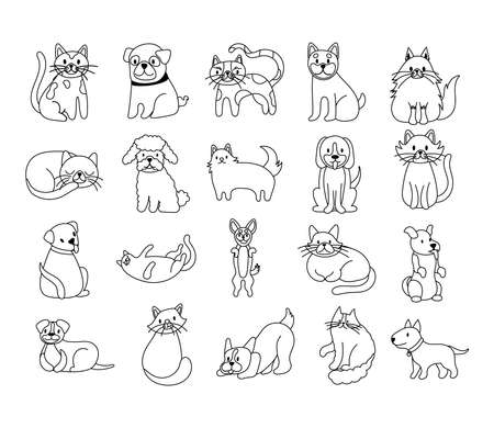 bundle of cats and dogs set icons vector illustration design