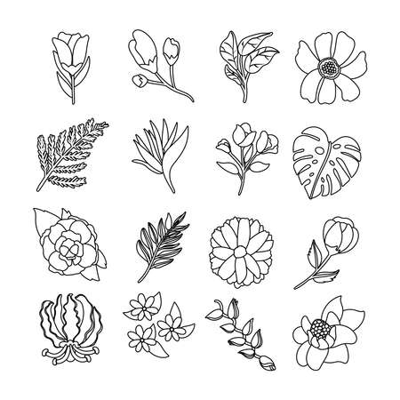 bundle of beautiful flowers and leafs icons vector illustration design