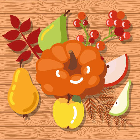 pumpkin with fruits of autumn in wooden background vector illustration design