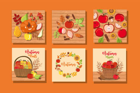 set of autumn posters with decoration vector illustration design