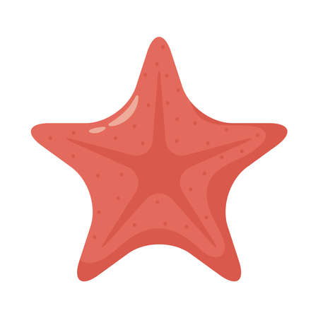 starfish shell animal flat style icon vector illustration design
