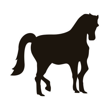 horse animal silhouette figure icon vector illustration design