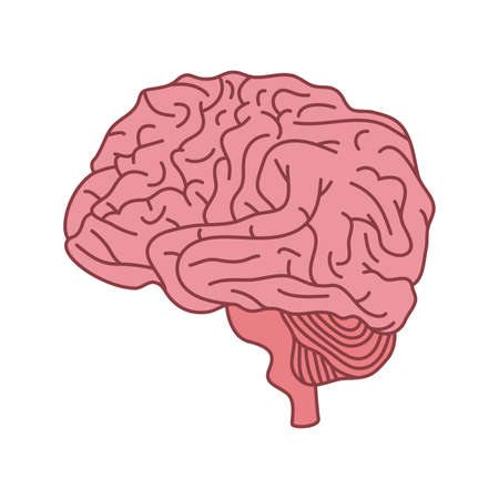 mental health brain organ icon vector illustration design