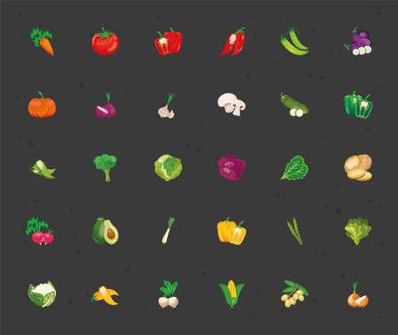 bundle of thirty vegetables set icons vector illustration design