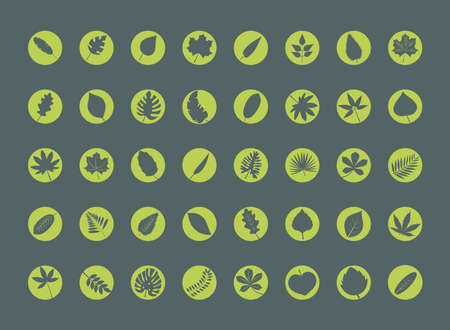 bundle of fourty leafs plants silhouette style icons vector illustration design