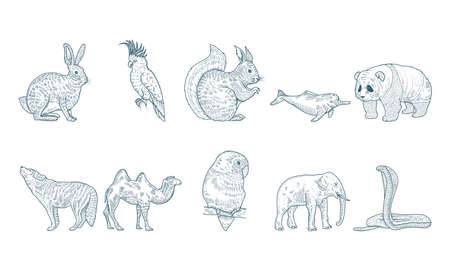 group of ten animals realistic characters drawn style icons vector illustration design