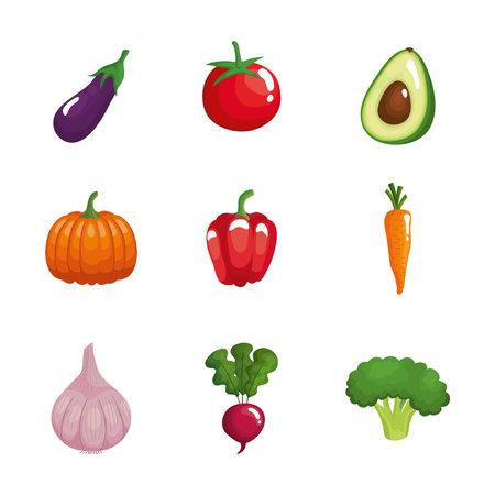 bundle of nine vegetables healthy food set icons vector illustration design