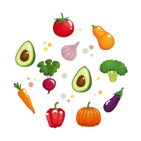 bundle of eleven vegetables healthy food set icons vector illustration design
