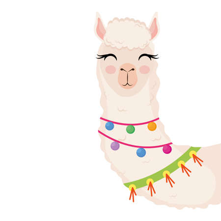 cute alpaca exotic animal with necklaces character vector illustration design