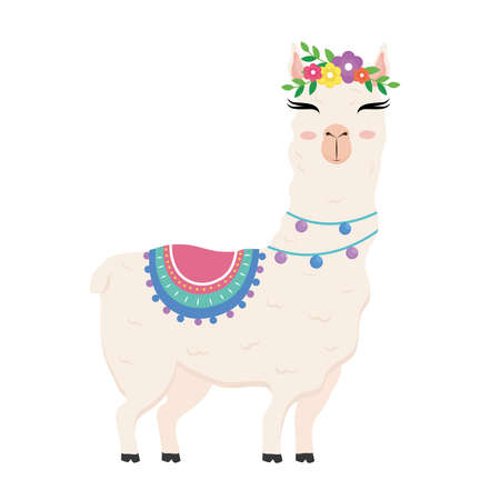 cute alpaca exotic animal with chair and flowers in head and necklaces vector illustration design