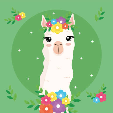 cute alpaca exotic animal with flowers decoration in head and neck vector illustration design