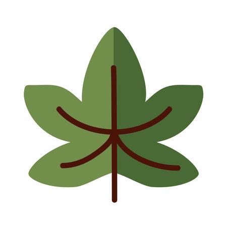 Autumn maple leaf line and fill style symbol design, season nature ornament and garden heme Vector illustration