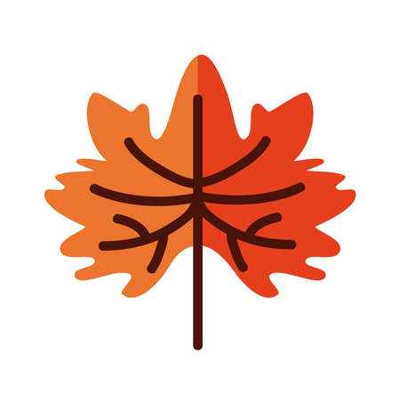 Autumn maple leaf line and fill style icon design, season nature ornament and garden heme Vector illustration