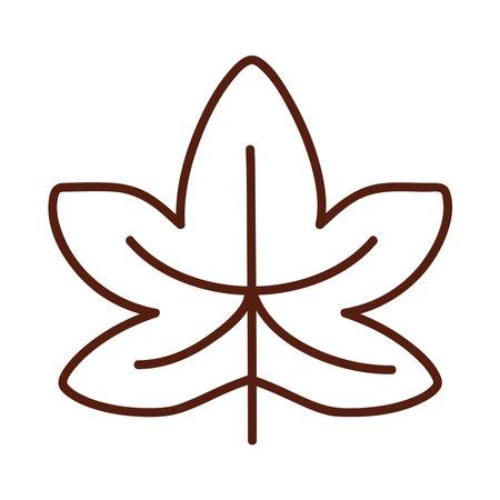 Autumn maple leaf line style symbol design, season nature ornament and garden heme Vector illustration Illusztráció