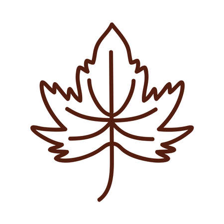 maple leaf line style icon design of Plant natural floral theme Vector illustration