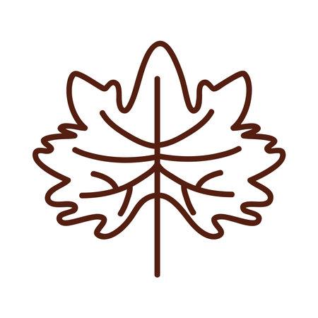Autumn maple leaf line style icon design, season nature ornament and garden heme Vector illustration