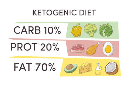 healthy ketogenic diet infographic chart