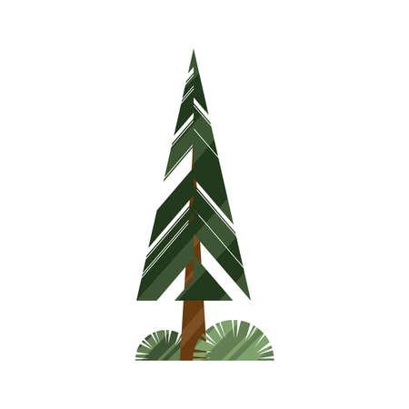 pine tree plant nature icon