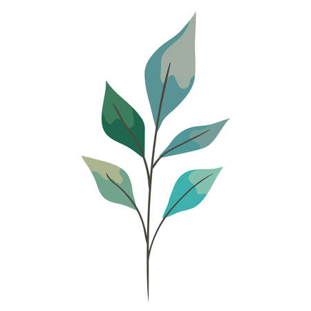 branch with leafs garden Ilustracja