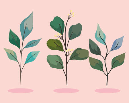 three branchs with leafs