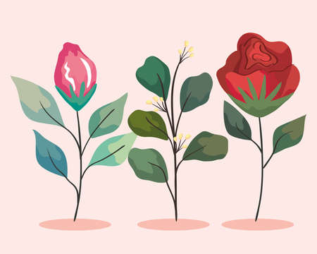 two flowers garden