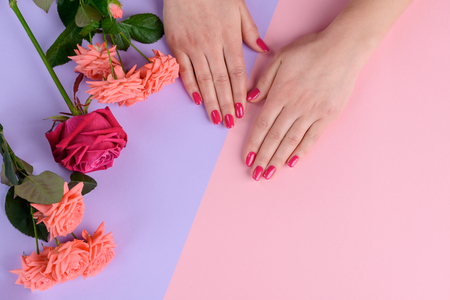 Pink nails and bunch of roses. Simple and stunning style of finishing. Repair and manicure. Stock Photo