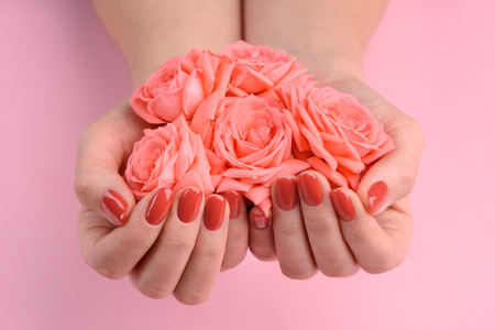 Coral roses and polished nails. Bunch of rosebuds in cupped hands. Purity and beauty.