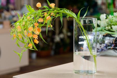 Orange campanula flower