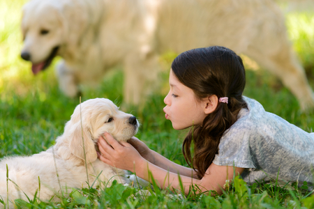 Girl playing with dogs neb