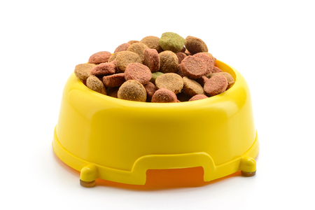 Yellow bowl of dog food