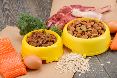 Raw and store-bought pet food