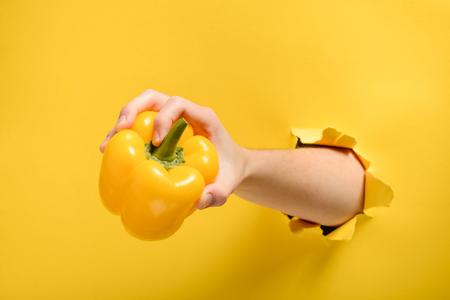 Hand taking a yellow bell pepper through torn paper wall. Ripe fruit for cooking. Healthy nutrition and natural ingredient.