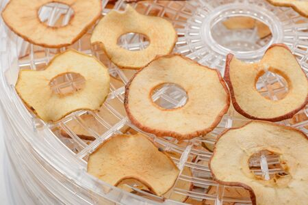 Apple slices after being dried in a dehydrator. Cut fruits spread on meshy racks. DIY healthy snacks.
